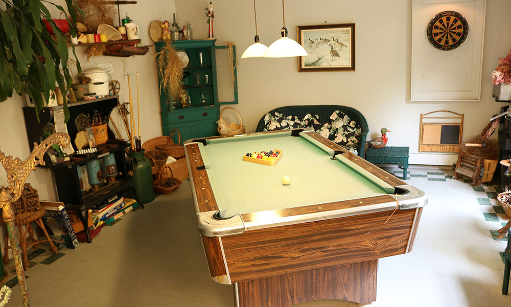 Recreation room - Goose Pond Inn