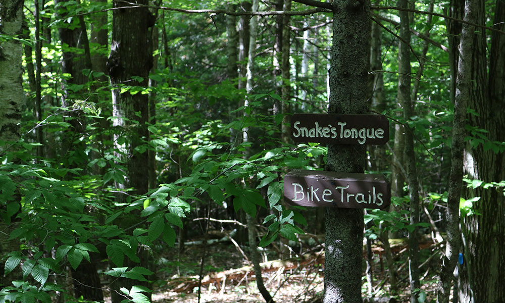 Bike trail sign in North Creek Ski Bowl Trails