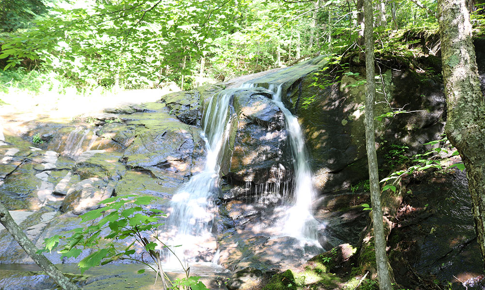 Waterfalls on the Schaefer Trail